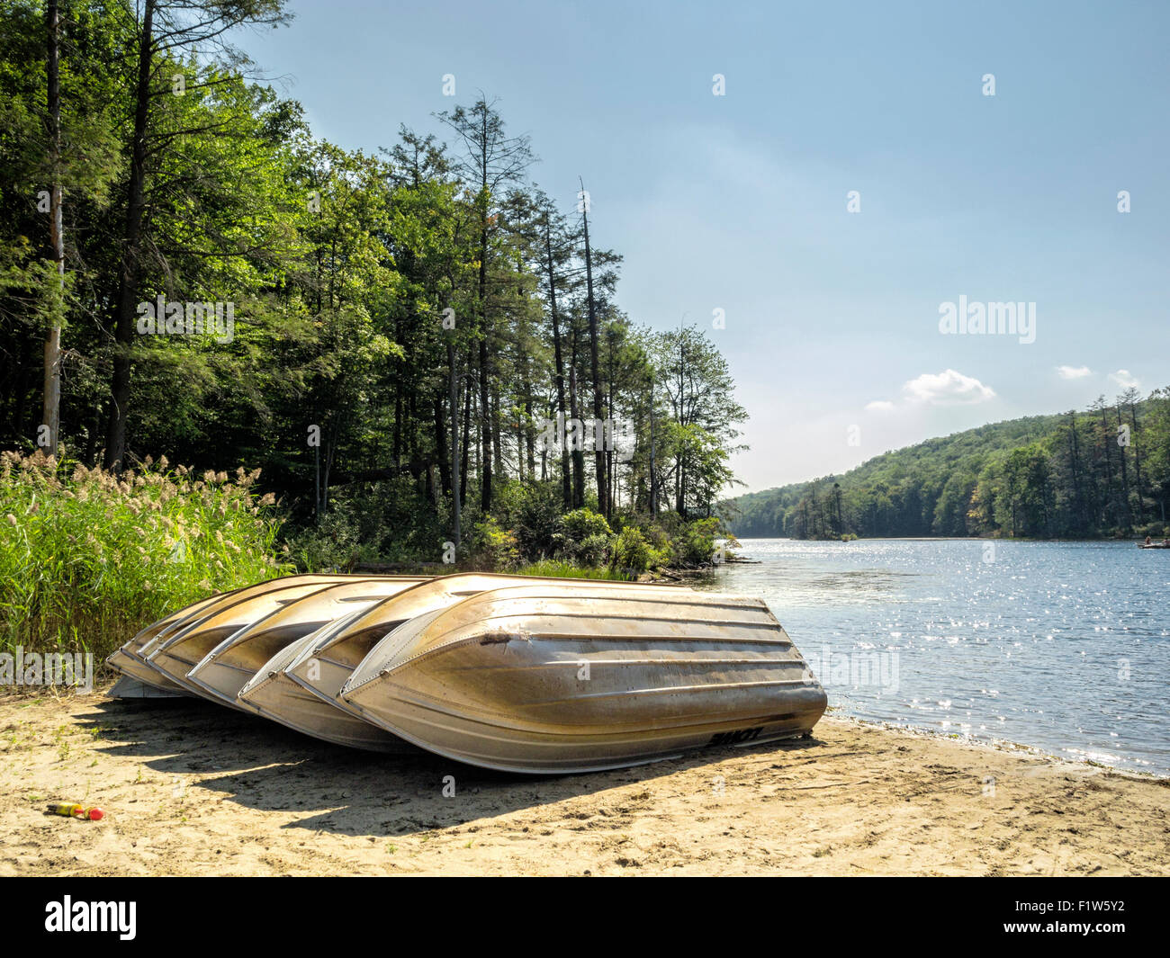 carmel-new-york-7-sept-2015-row-boats-di