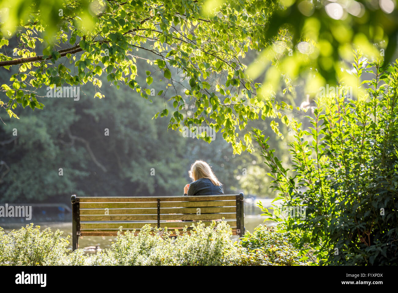 a-woman-sat-on-a-bench-backlit-by-the-su