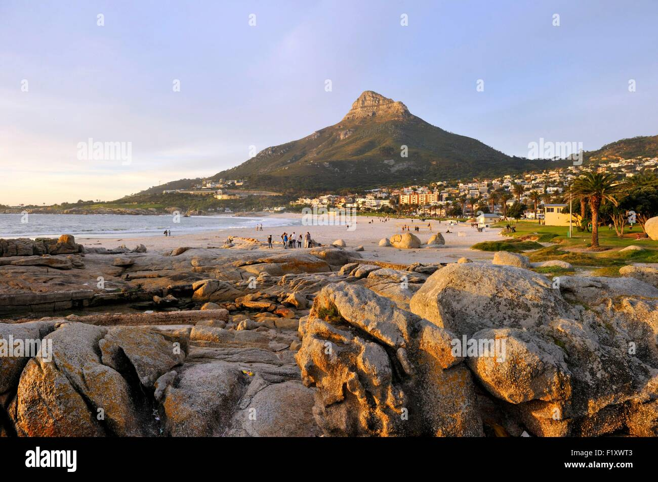 South Africa Western Cape Cape Town Camps Bay The Beach Lion 39 S Stock