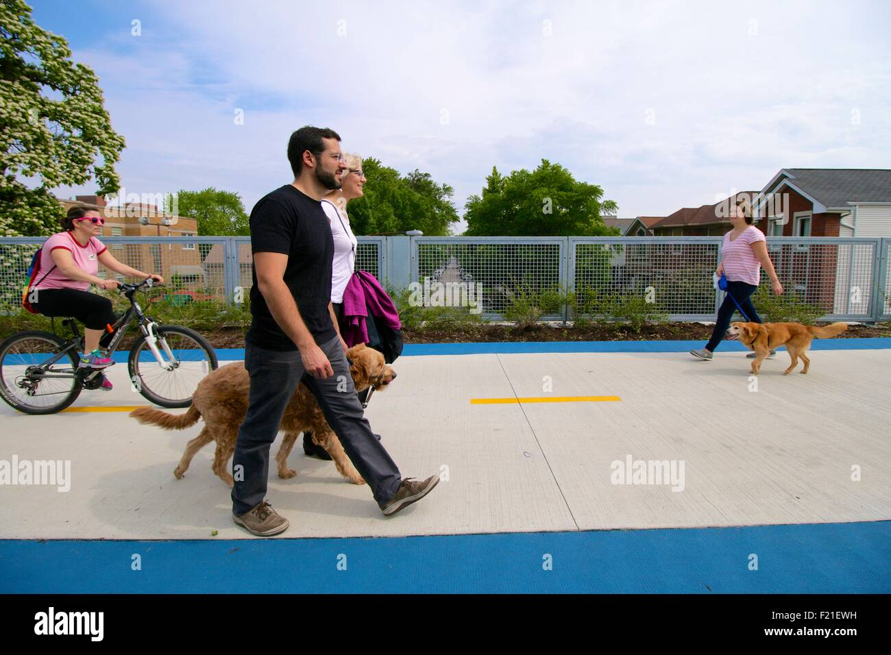 walking-dogs-on-the-bloomingdale-trail-c