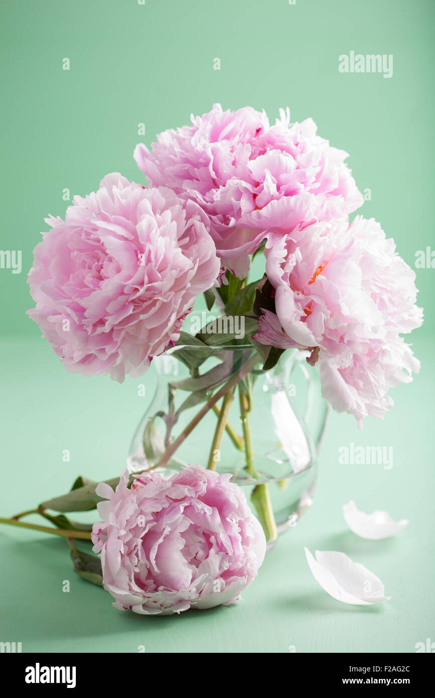 Peony vase excellent best ideas about peony arrangement on top stock photo beautiful pink peony flowers bouquet in vase with peony vase reviewsmspy
