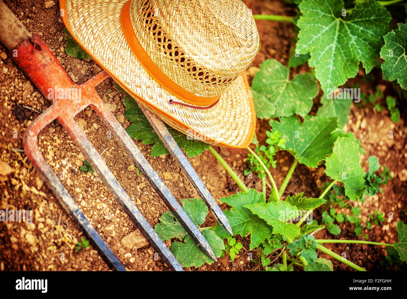 Farmer Tools In The Garden Pitchfork And Straw Hat Lying Down On