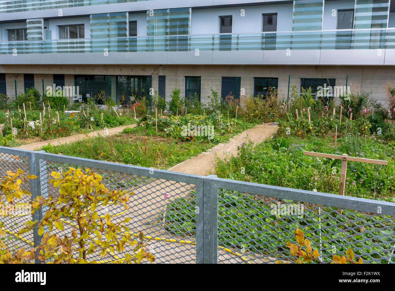 Modern Architecture France paris, france, community vegetable garden in new modern