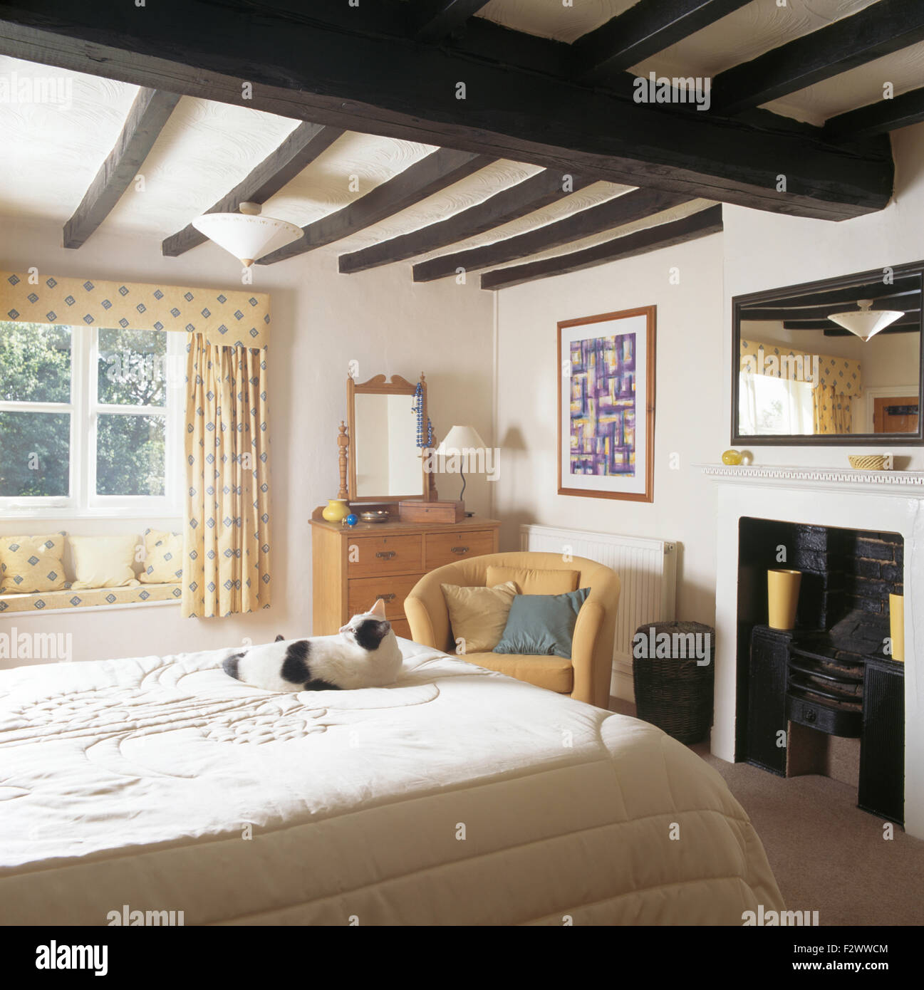 black white cat sitting on on bed in cottage bedroom with black