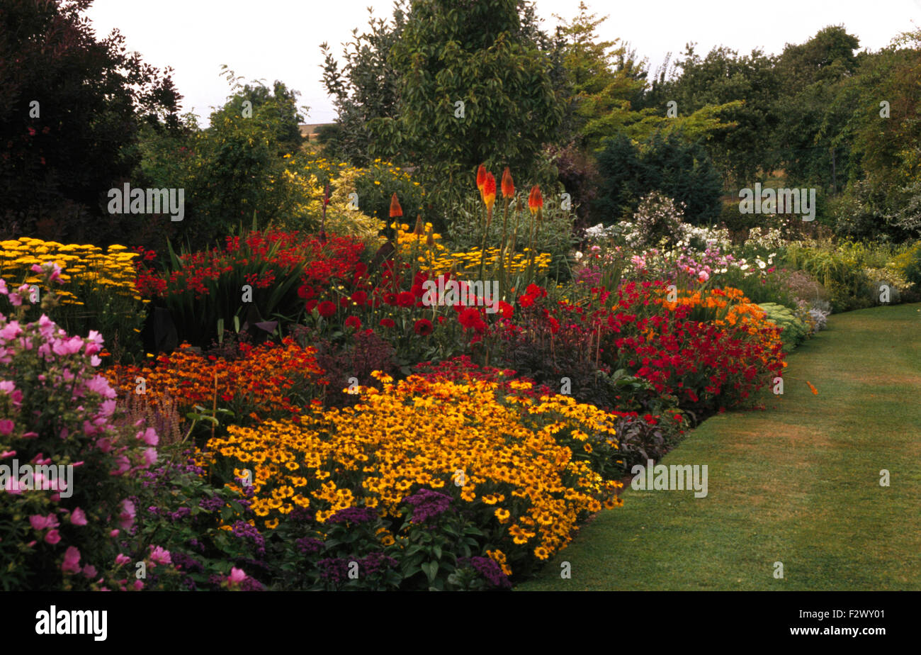 Orange And Yellow Perennials In A Colourful Herbaceous