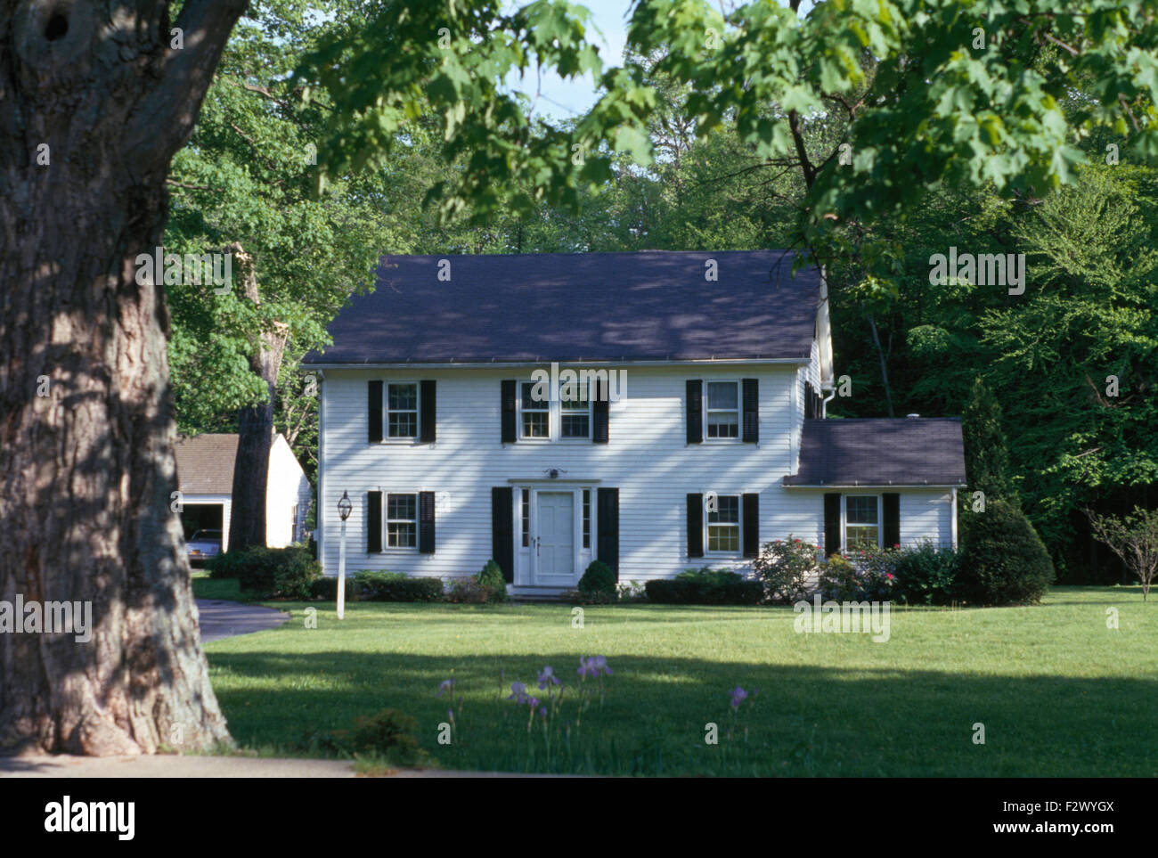 Exterior Of White Clapboard House With Black Shutters