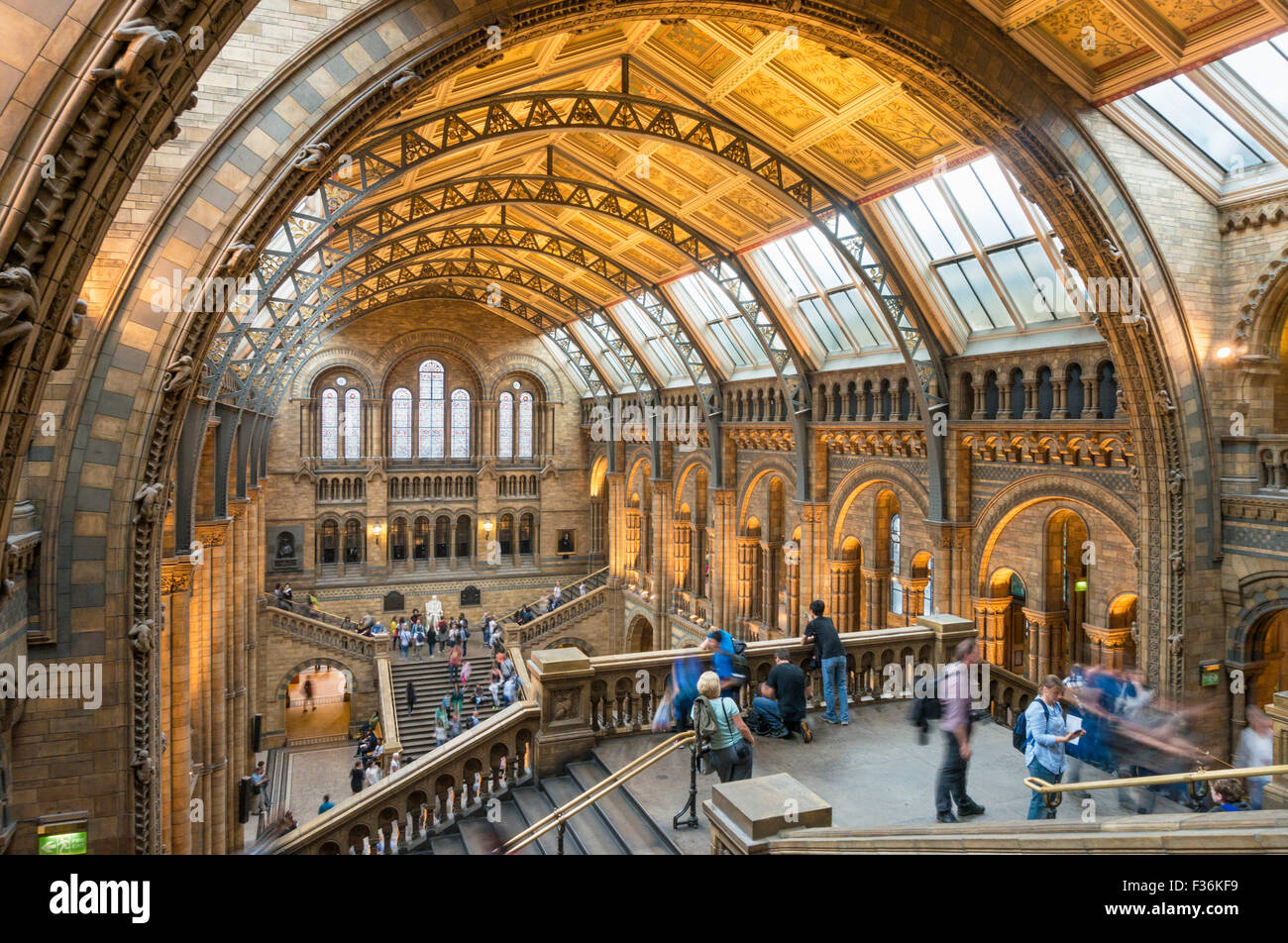 Where Is The Natural History Museum Dublin