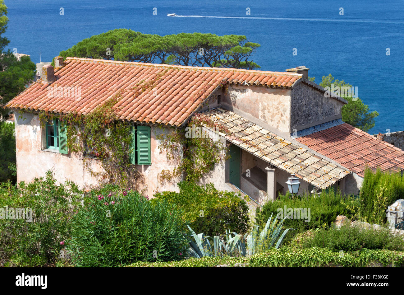 Stone old mediterranean house with green shutters in the for Mediterranean stone houses