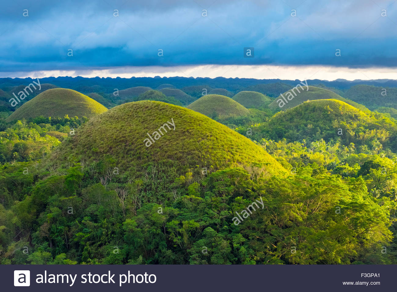 Chocolate Hills in late afternoon, Carmen, Bohol, Central Visayas ...