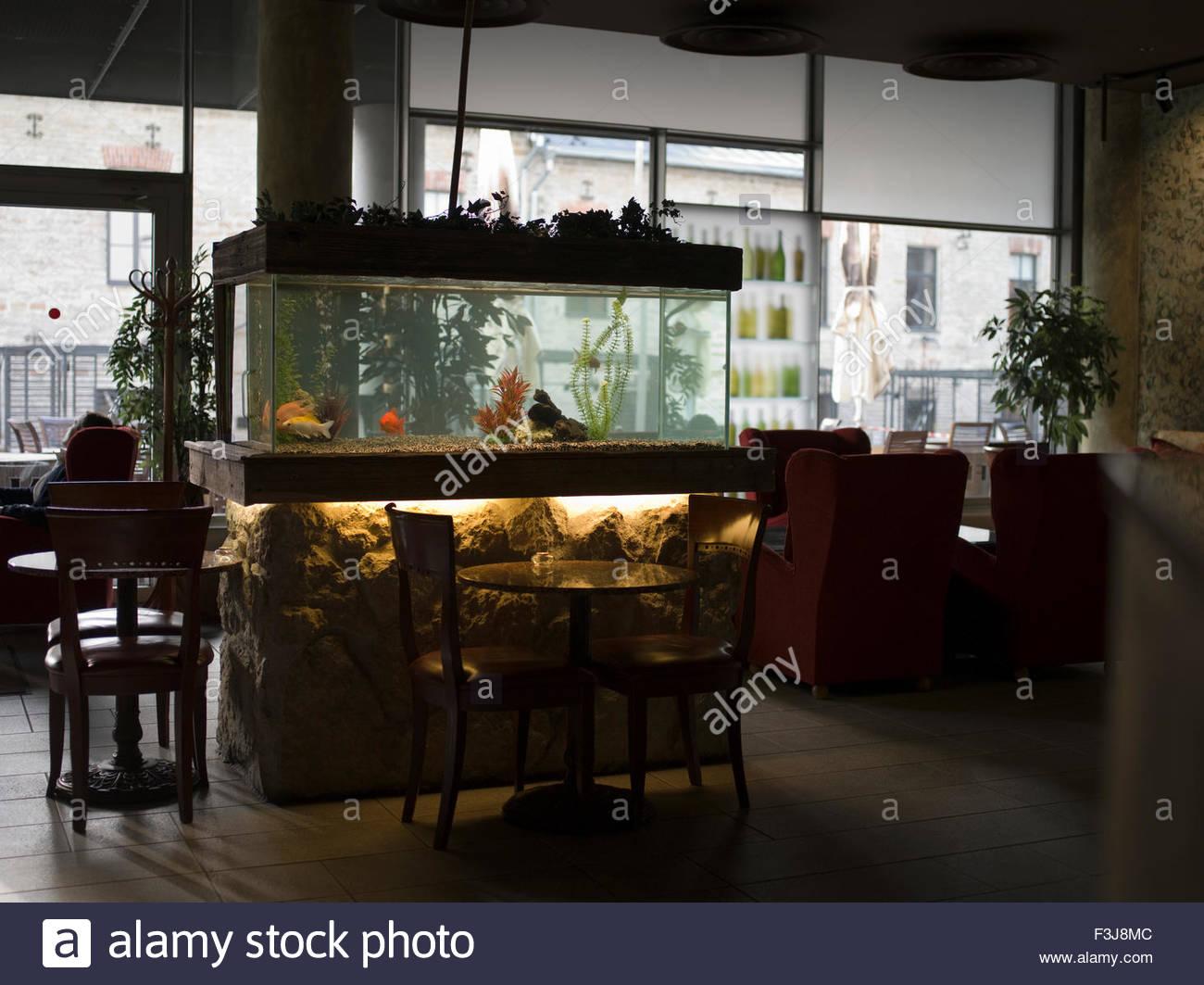 cafe coffee shop - tallinn estonia europe - (medium format stock