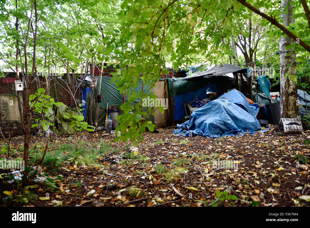 Homeless in the UK living with tent and tarpaulins semi-permanently hidden among trees Bristol England & Homeless in the UK living with tent and tarpaulins semi ...