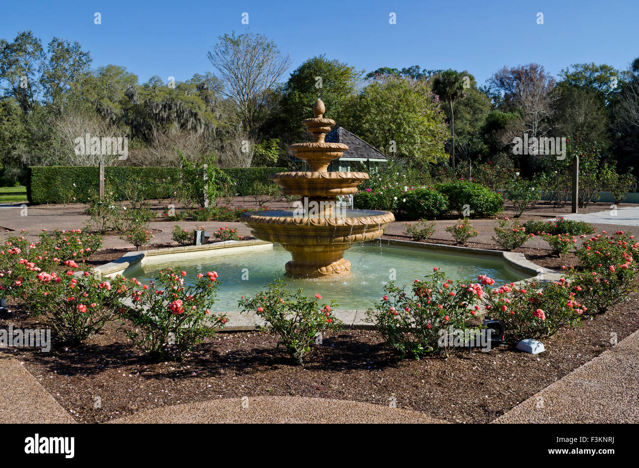 Charmant Fountain At The Harry P. Leu Botanical Gardens In Orlando, Florida. Ornate  Fountains Surrounded By Rose Bushes. February 2015