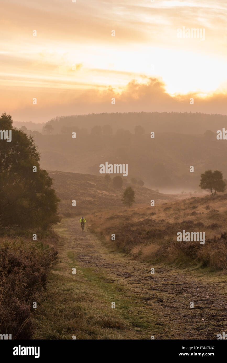 cannock-chase-staffordshire-uk-10th-oct-