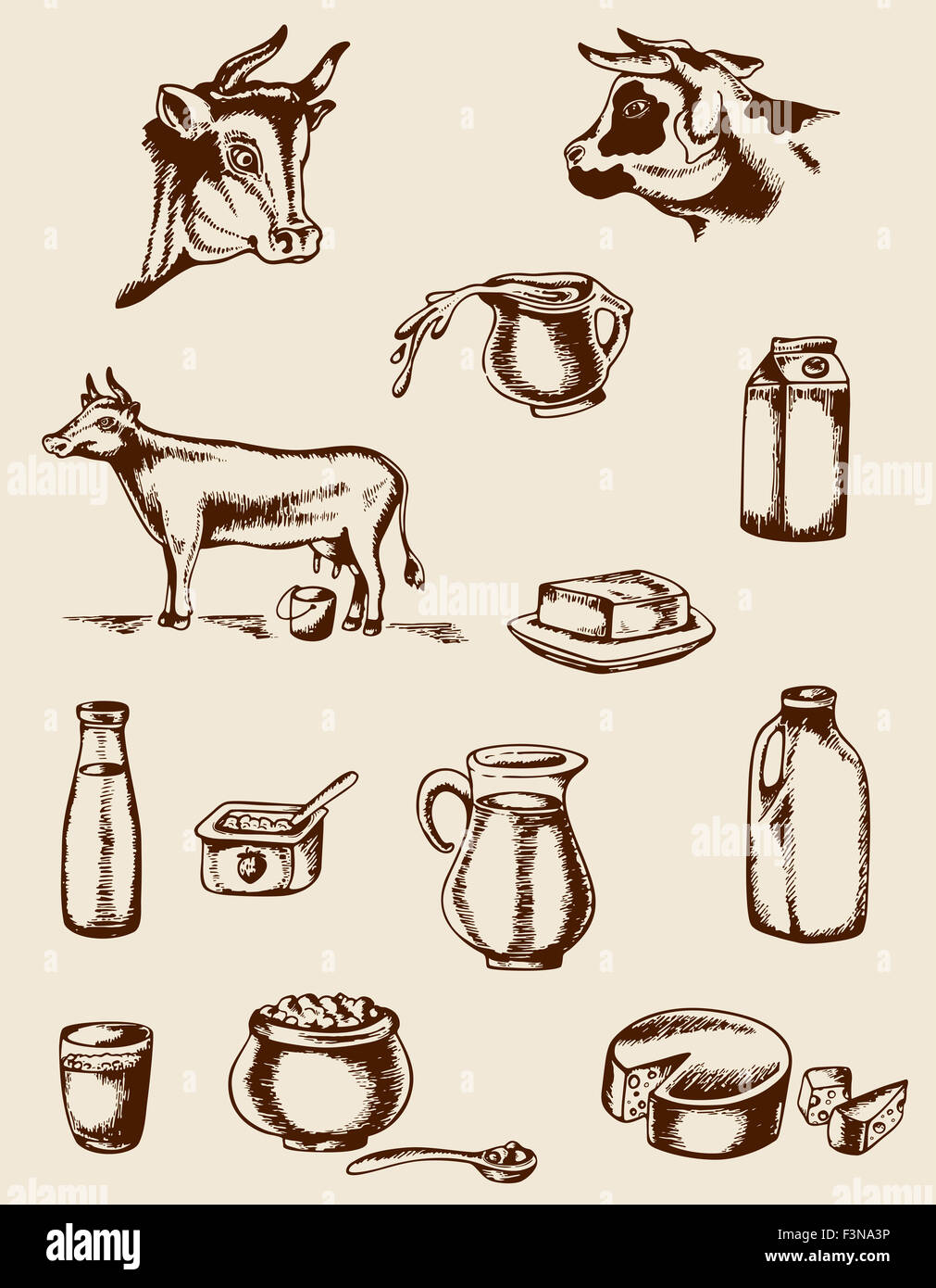 Set of vintage hand drawn dairy products and cow Stock ...