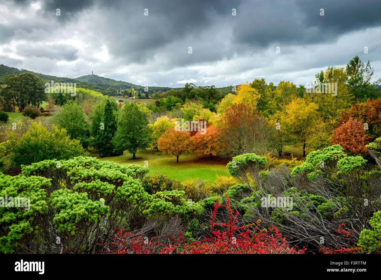 autumn landscape under the rain in adelaide hills stock