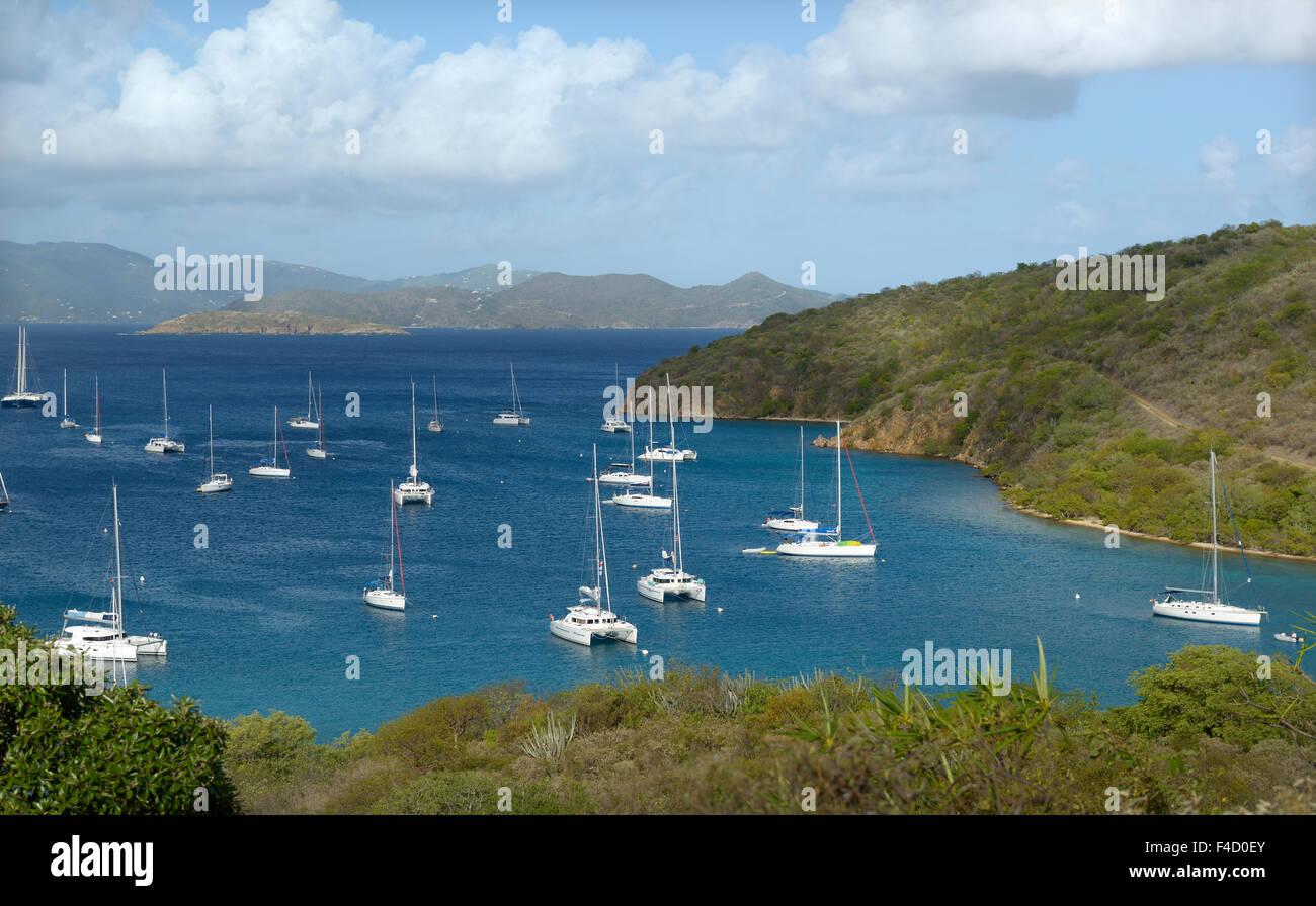 Valuable information teachers needed in british virgin island think, that