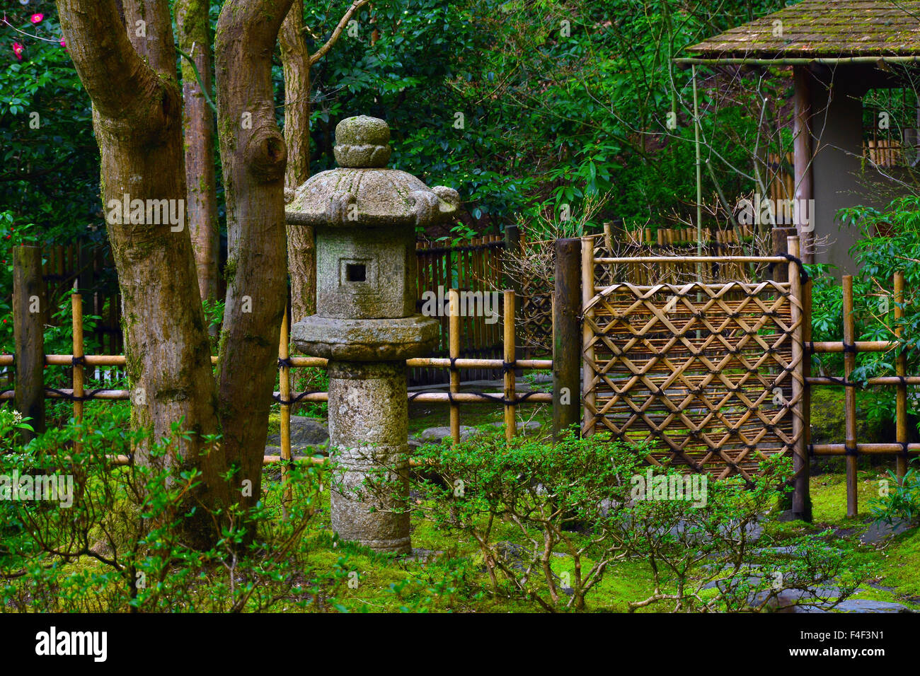 Pagoda, Fence, And Trees, Portland Japanese Garden, Portland, Oregon, USA  (PR