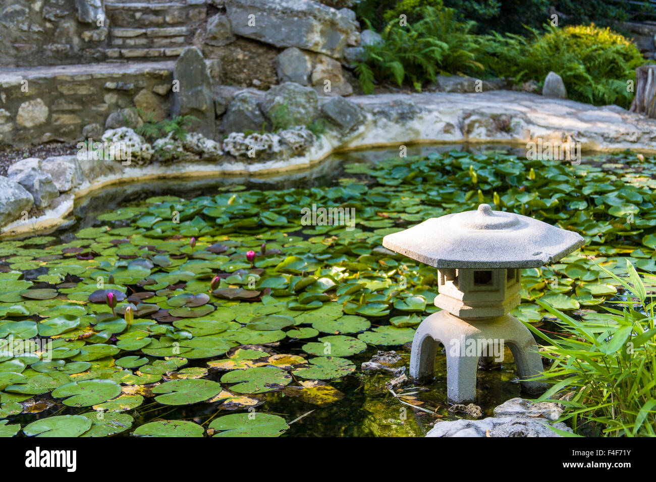USA, Austin, Texas, Zilker Botanical Garden, Japanese Garden, And Water  Lily Pond, Zilker Park