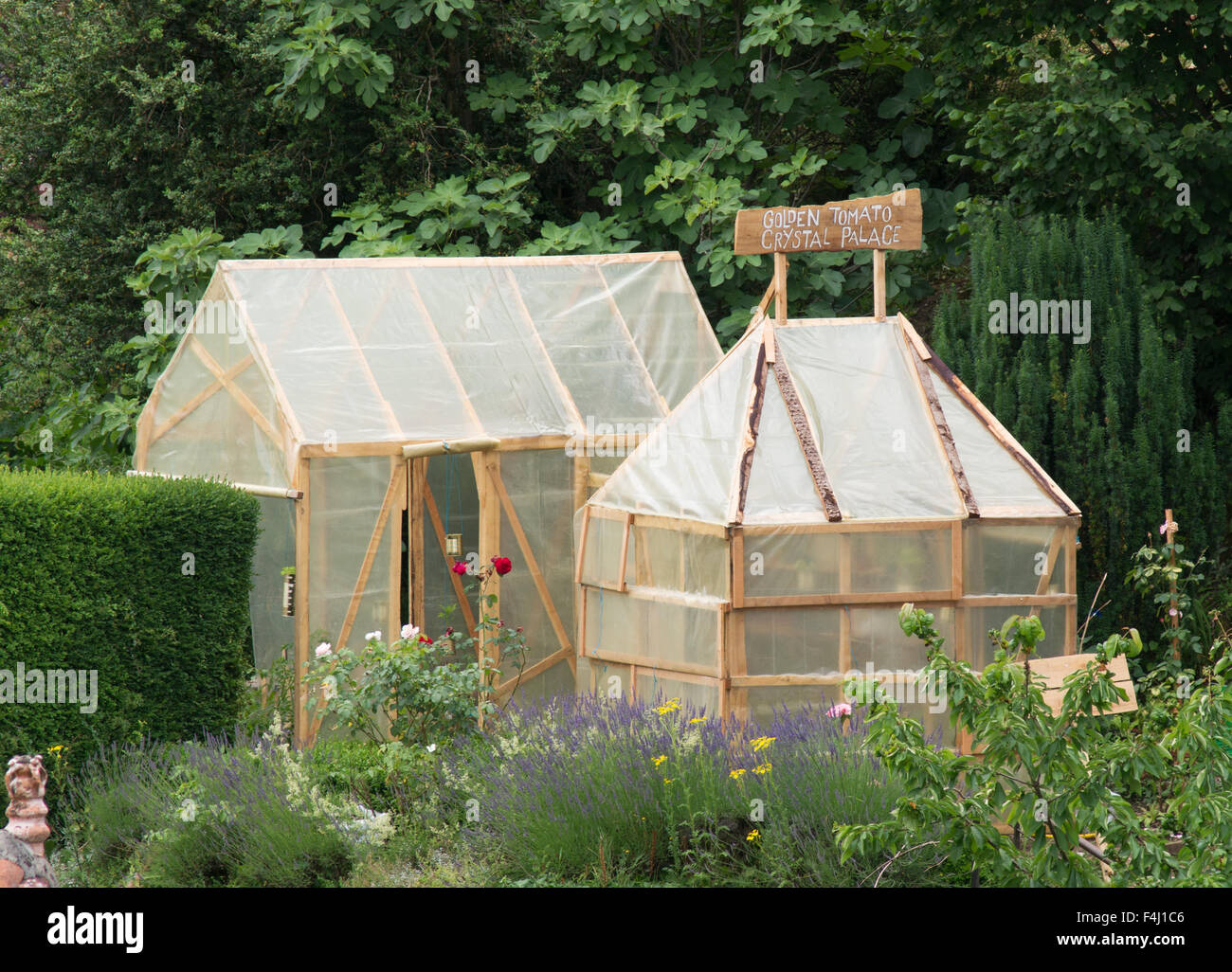 Wooden homemade plastic covered greenhouses seen at stock for Homemade greenhouse plastic