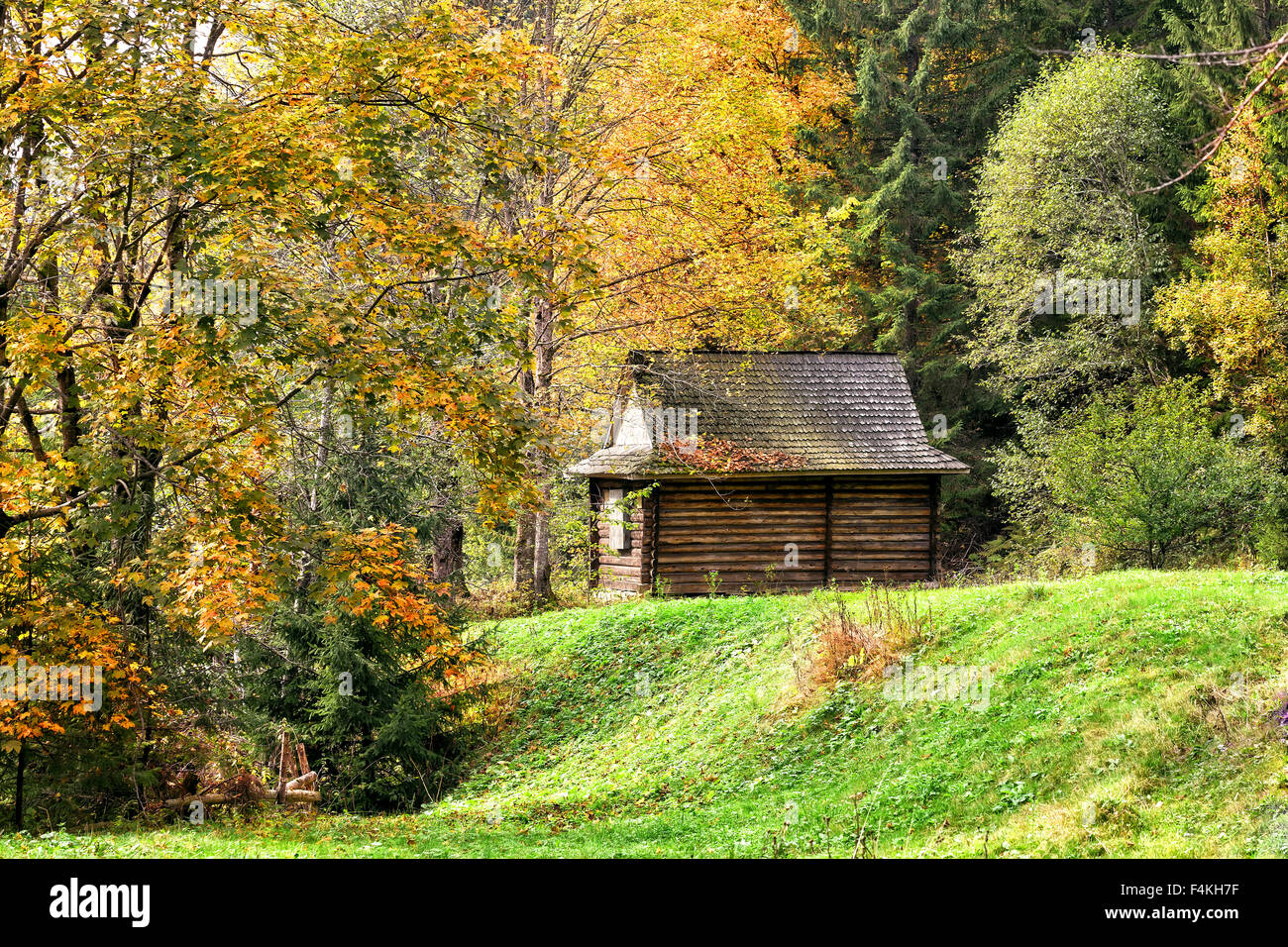 Stock photo wooden house in the autumn forest on the lawn