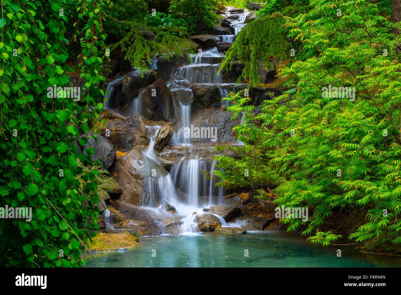 British Columbia, Canada, Vancouver VanDusen, Botanical Garden, Botanical,  Garden, Summer, Waterfall
