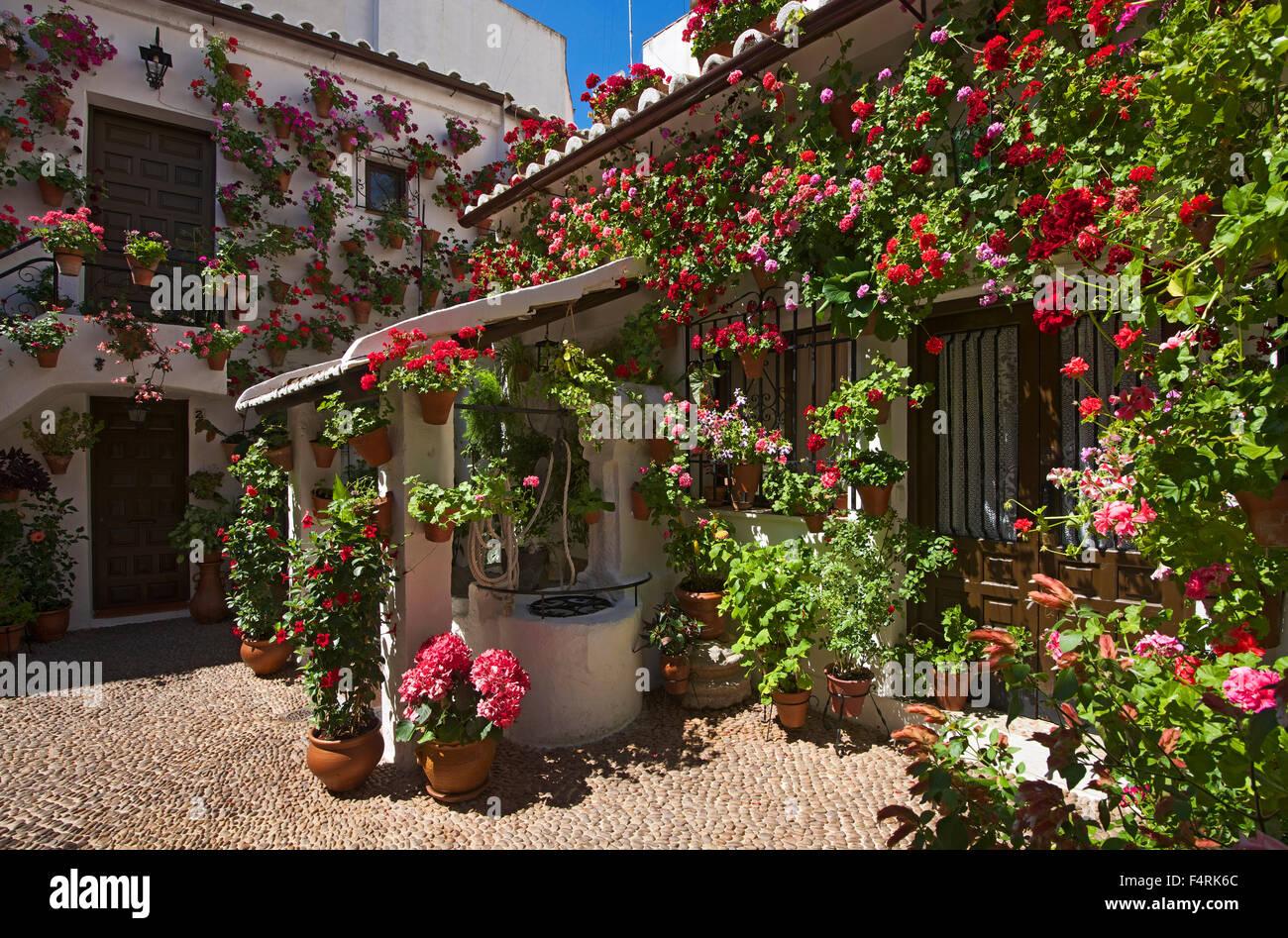 Andalusia, Spain, Europe, Outside, Day, Cordoba, Fiesta De Los Patios