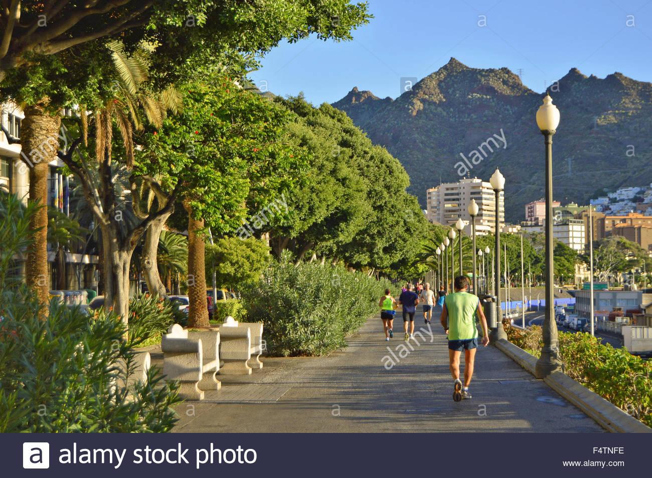 Hotels Santa Cruz De Tenerife