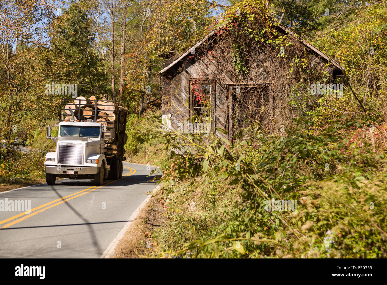 A logging truck passes an old wooden barn on a rural road in ...