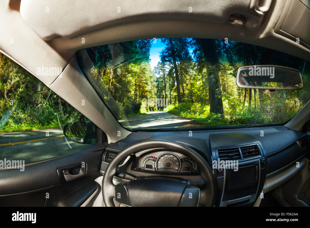 view inside the car with forest of redwood outside stock photo royalty free image 89258690 alamy. Black Bedroom Furniture Sets. Home Design Ideas