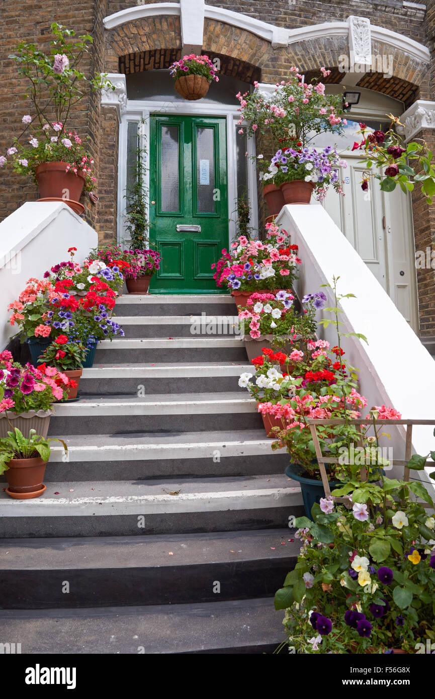 Staircase to front door of terraced house decorated with plant
