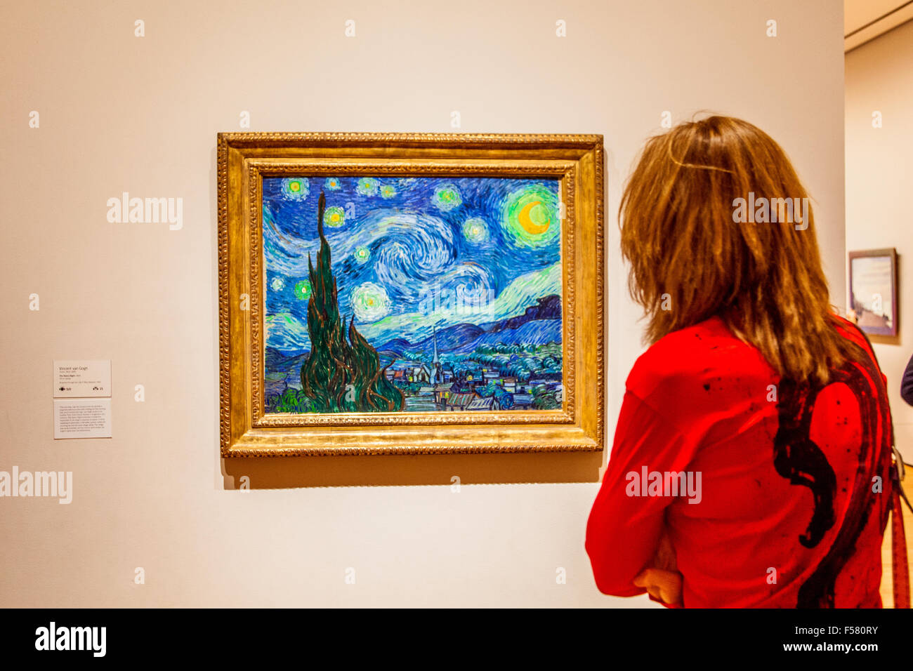 an assessment of the painting starry night by vincent van gogh The starry night vincent van gogh 1889 moma the museum of modern art from the collection of  the painting, like its daytime companion, the olive trees, is rooted.