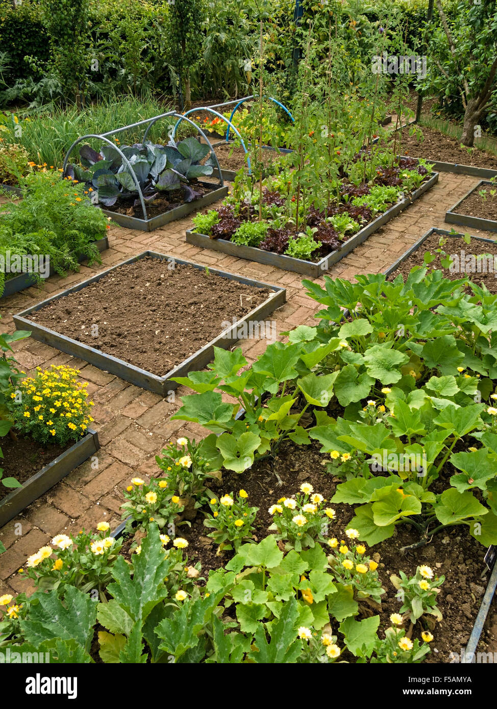 Cottage Vegetable Garden With Small Raised Beds And Brick Paved Paths,  Barnsdale Gardens, Rutland, England, UK.