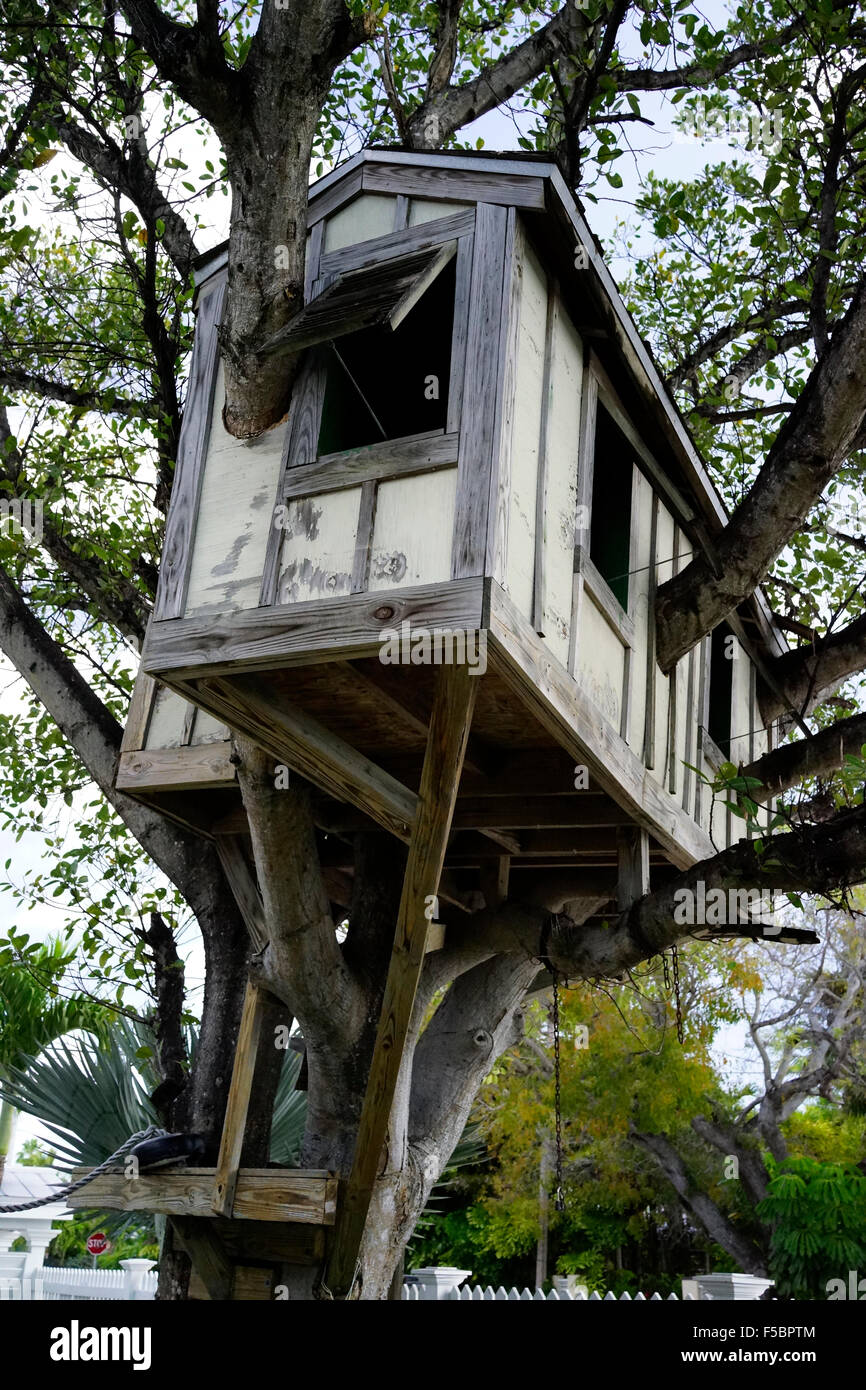 Kids Tree House tree house kids stock photos & tree house kids stock images - alamy