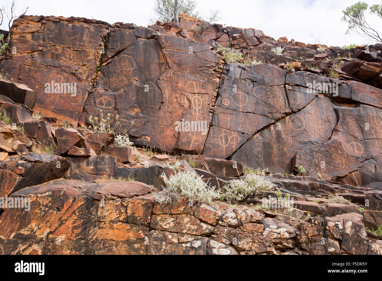 Ancient aboriginal rock art engravngs symbols of initiation rites ancient aboriginal rock art engravngs symbols of initiation rites on red stone walls in flinders ranges in outback australia biocorpaavc Image collections