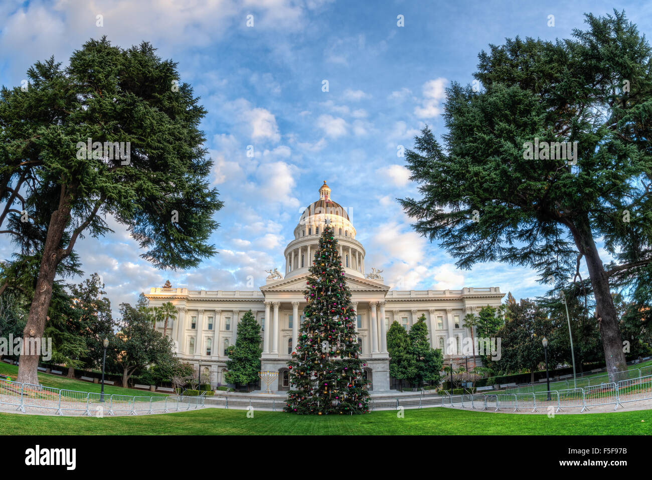 Wide angle view of the Capital Christmas tree in front of the ...