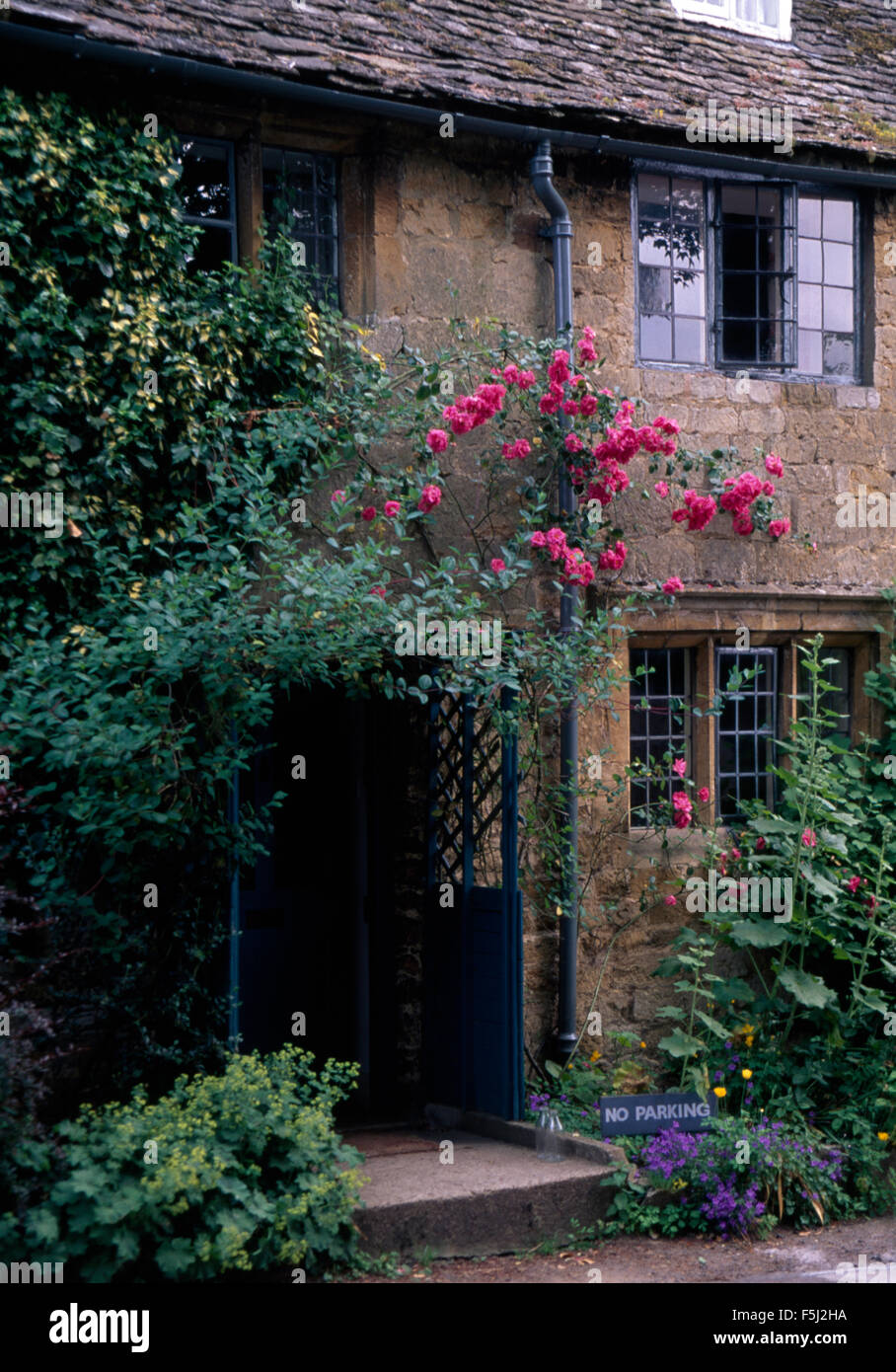 Pink Climbing Roses Above Wooden Porch Of An Old Stone House With Leaded  Light Windows Great Pictures