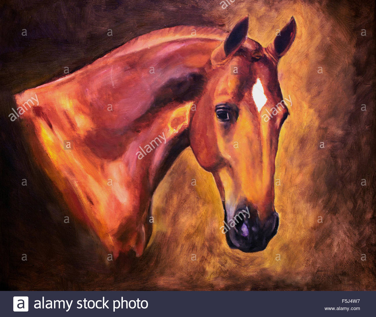 Horse head oil painting Stock Photo, Royalty Free Image ...