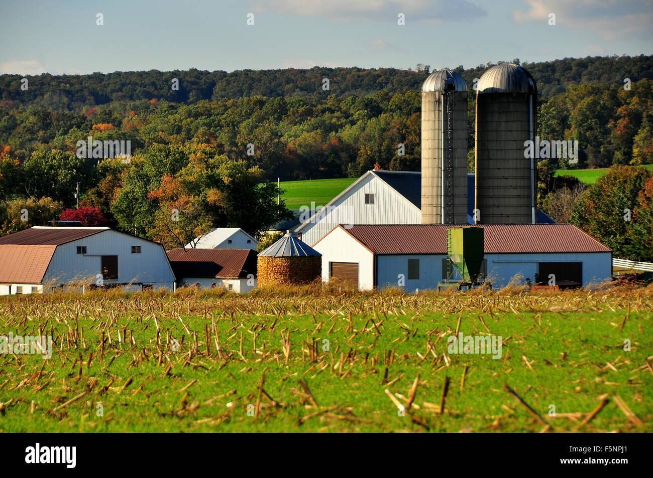 Amish crib for sale - Lancaster County Pennsylvania Amish Farm With Barns Silos And A Filled Corn Crib For Feeding Livestock In Winter