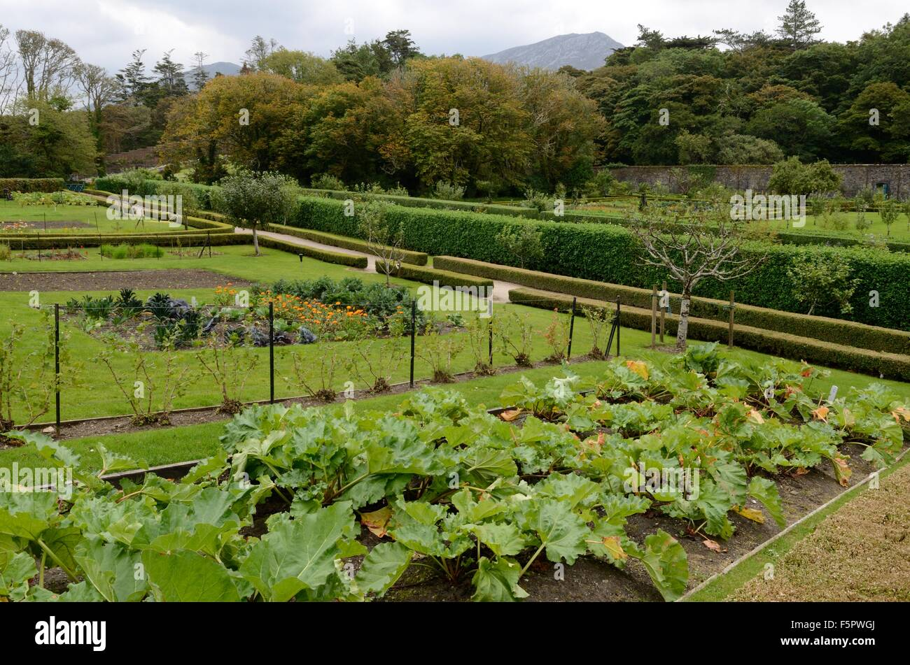 Kitchen garden at kylemore abbey victorian walled garden for Garden design galway