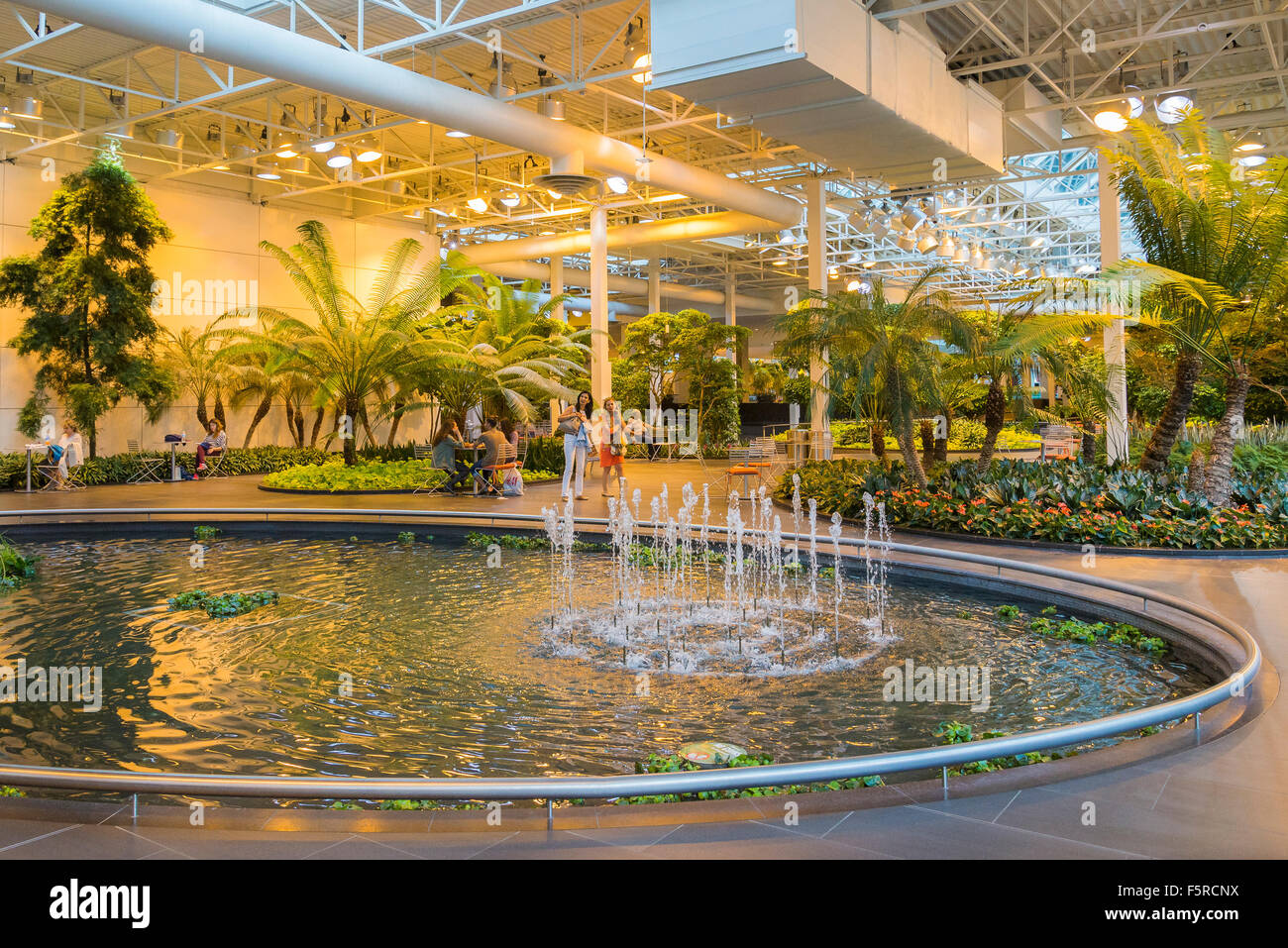 The devonian gardens year round indoor park calgary for Indoor botanical gardens