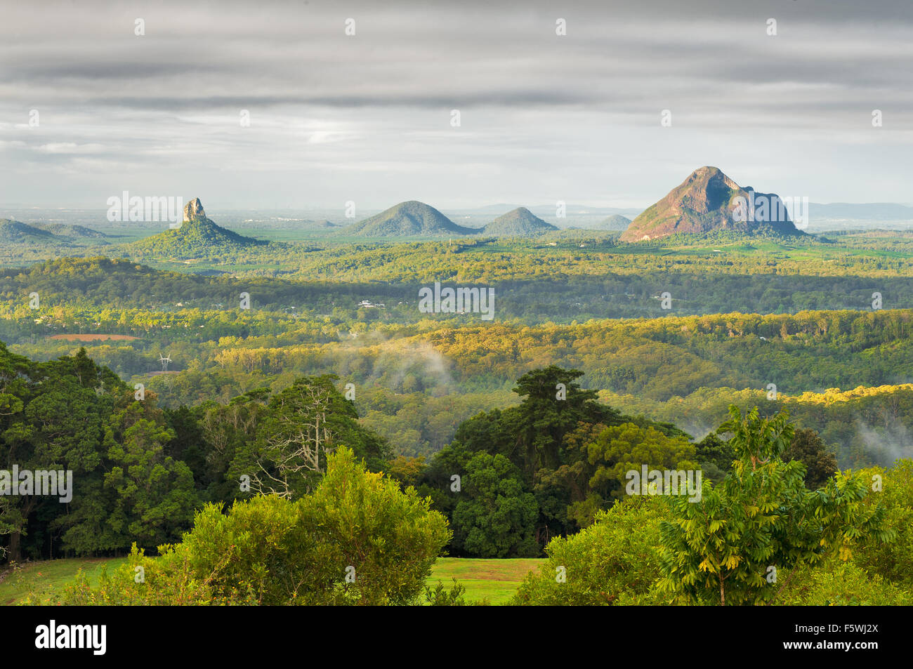 The Glass House Mountains with Mt Beerwah and Mt Coonowrin Stock
