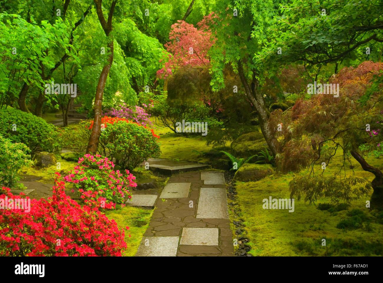 Tea Garden Path Portland Japanese Garden Washington Park Portland Stock Photo Royalty Free