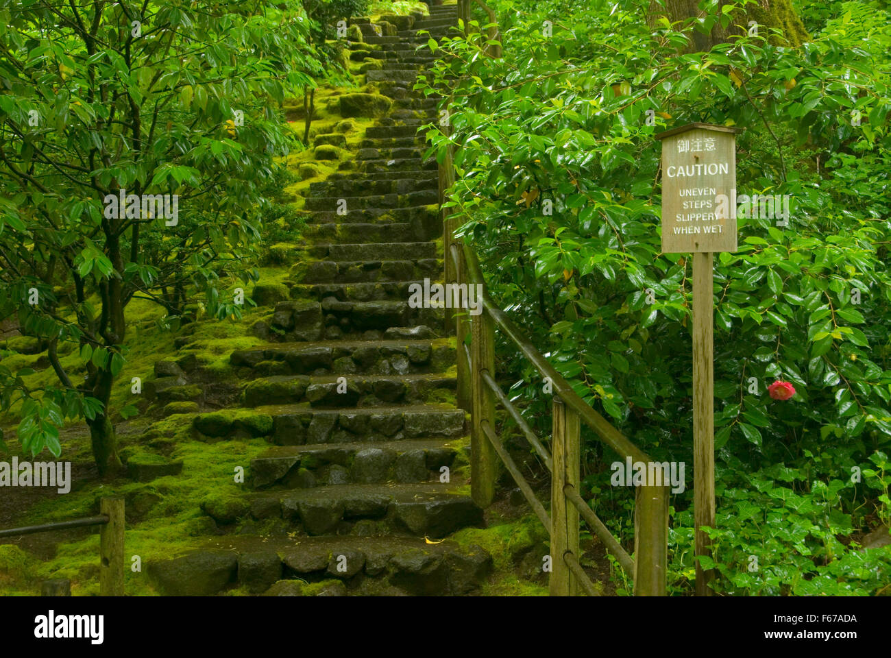 Natural Garden Stairway Portland Japanese Garden Washington Park Stock Photo Royalty Free