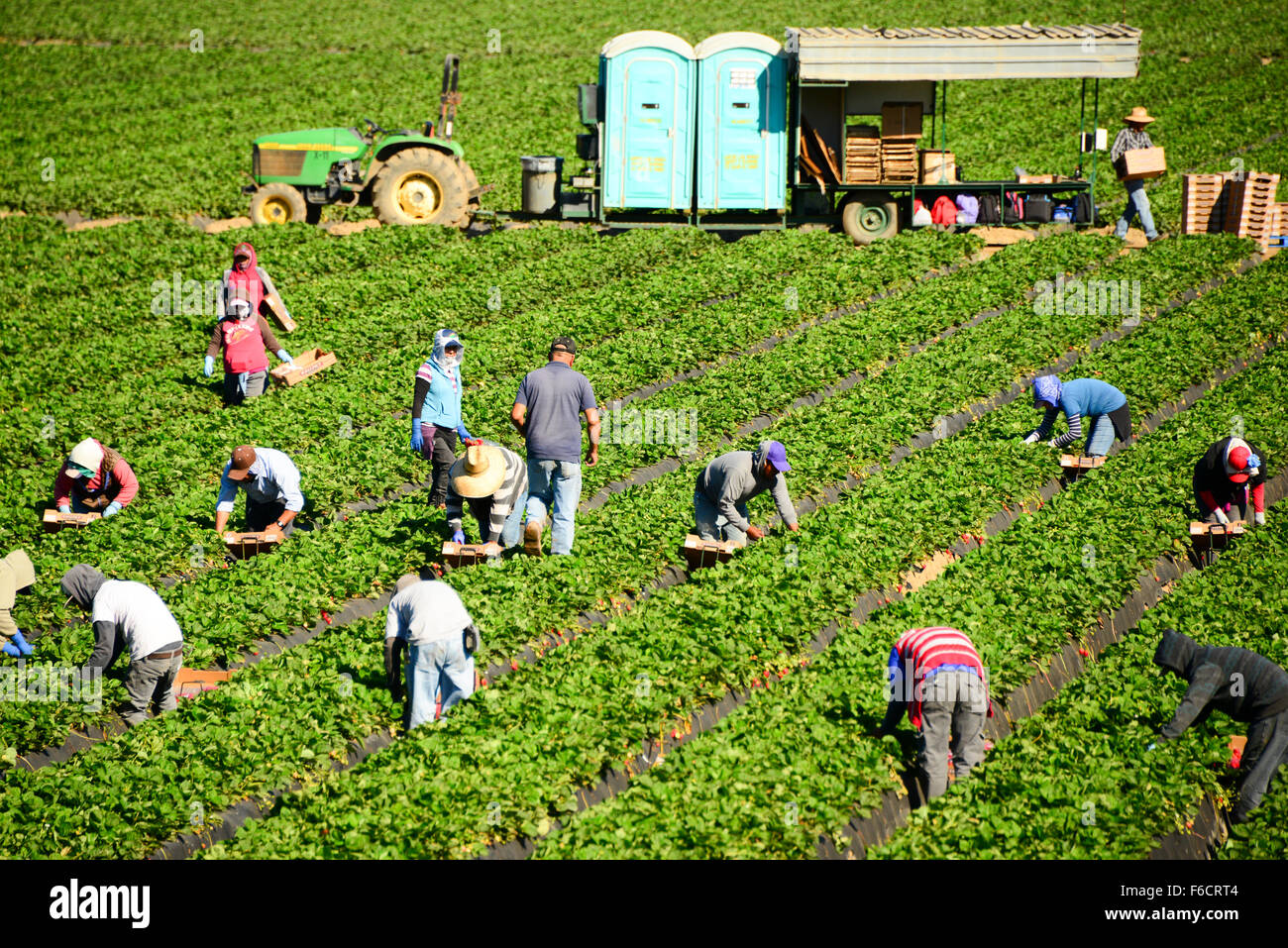 mexican migrant workers This week, im posting segments from my documentary, voices from the fields, a story of migrant workers in michigan it airs today on stateside migrant.