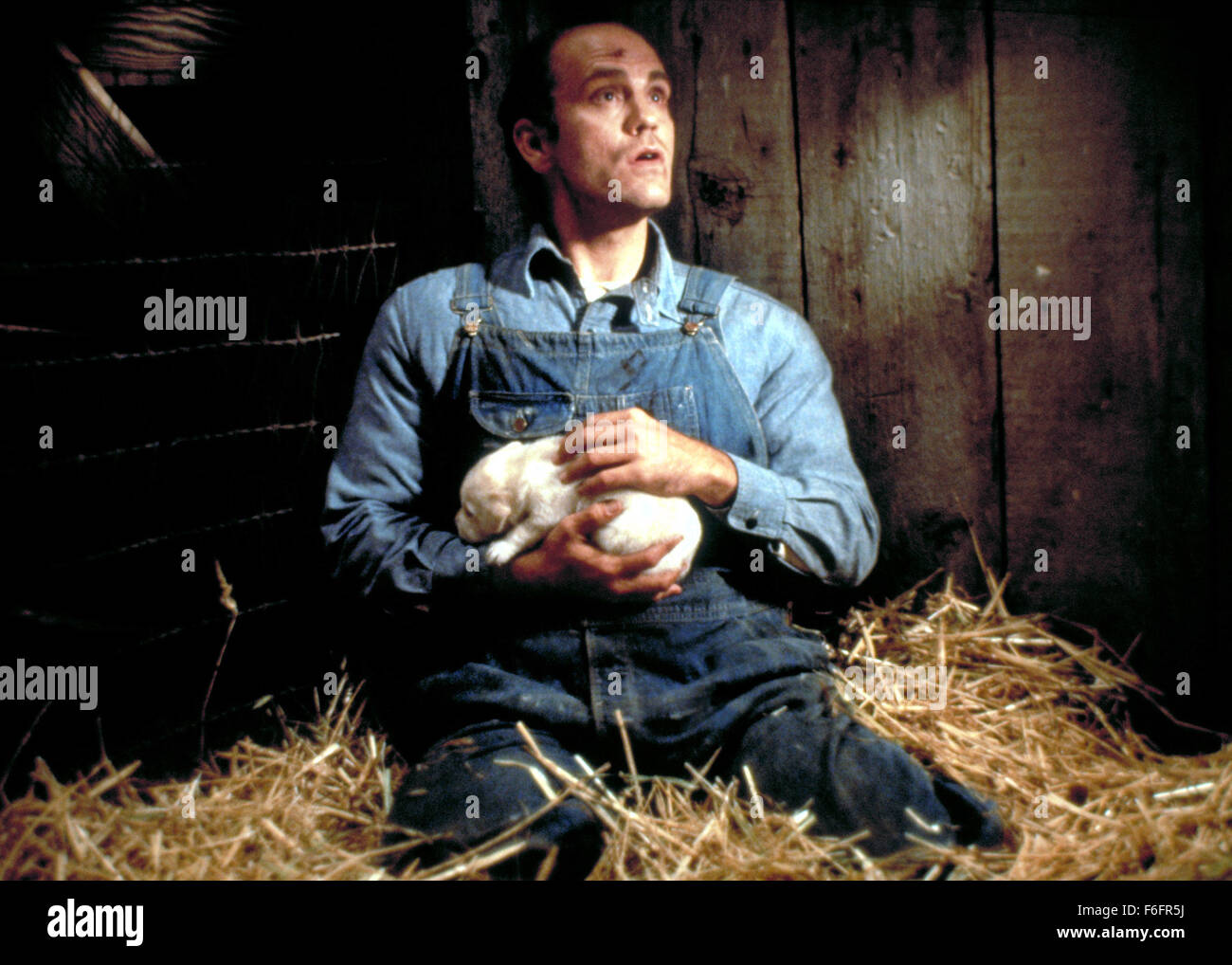 lennie george in of mice men essay Of mice and men persuasive essay  in this story of mice and men by john steinbeck,  it was better for george to kill lennie, because he knew how to comfort him .