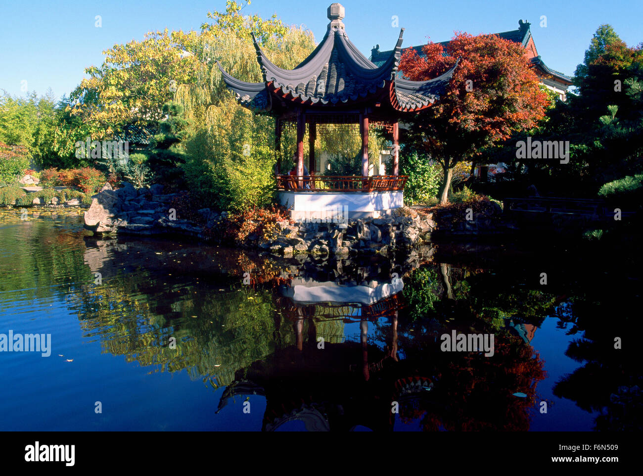 Dr. Sun Yat Sen Classical Chinese Garden In Chinatown, Vancouver, BC,  British Columbia, Canada   Chinese Pagoda