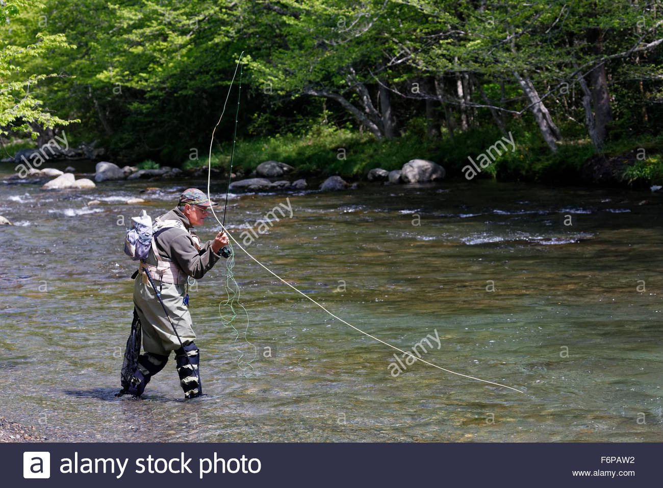 Man fly fishing in the middle prong river great smoky for Fly fishing smoky mountains