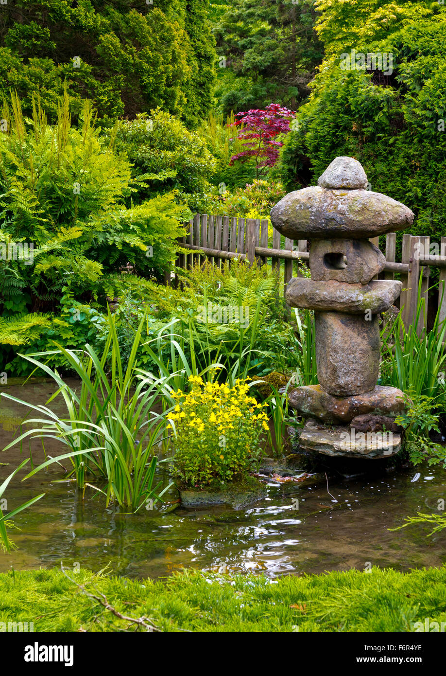 View Across The Japanese Garden At Newstead Abbey Near Ravenshead - Japanese gardens in england