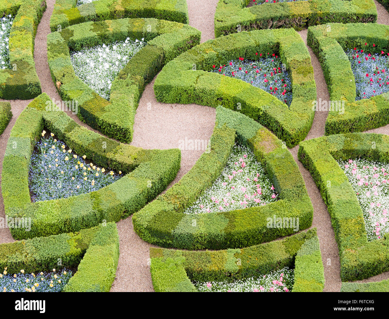 Garden Patterns In Boxwood. Boxwood Hedges Enclose Flower Gardens In Curved  Triangular Shapes In This Detail From The Gardens