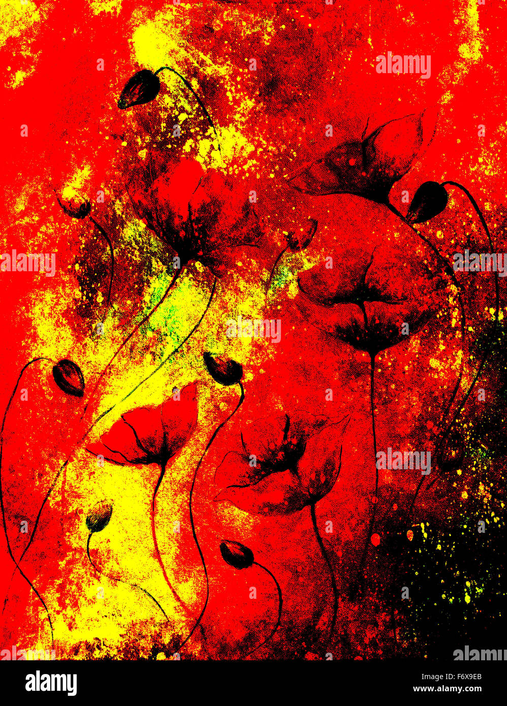 painting color poppy on color background color flower on abstract background